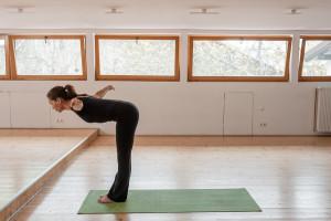 yoga-sun-salutation-yoga