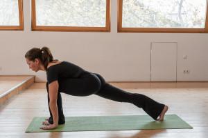 yoga-equestrian-pose