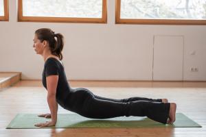 yoga-up-dog-pose